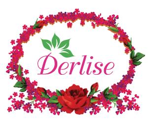 Derlise_300x250